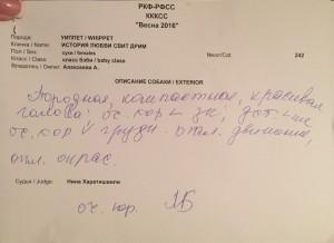 эксперт н харатишвили