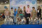 WORLD DOG SHOW 2016  moscow 23-26 june