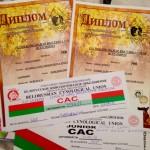 Беларусь. Республиканская выставка «Витебская осень 2016″