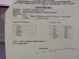 304BC81F-E4F3-436C-8F59-8FBA034BE179